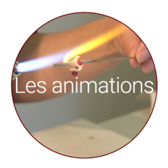 Pastille animations